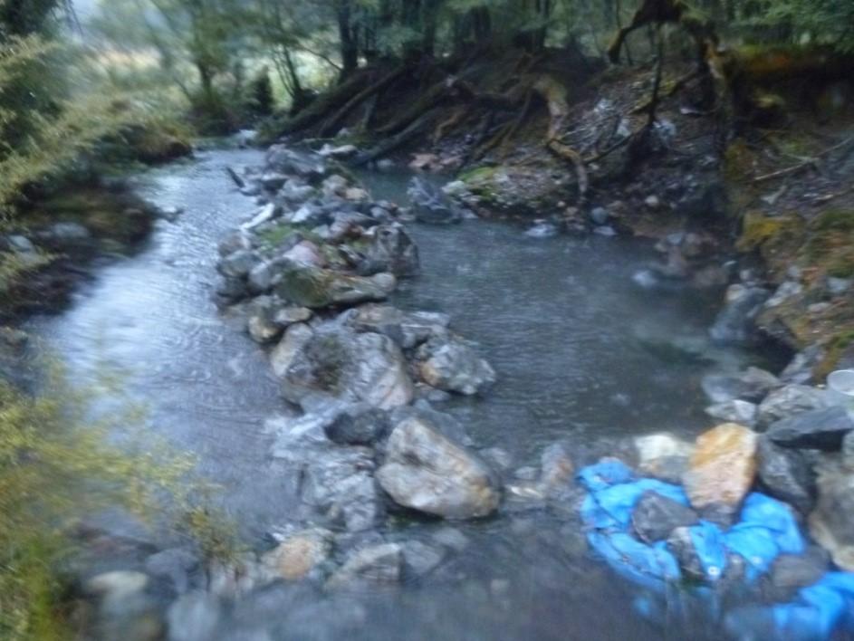 Hot Spring Stream
