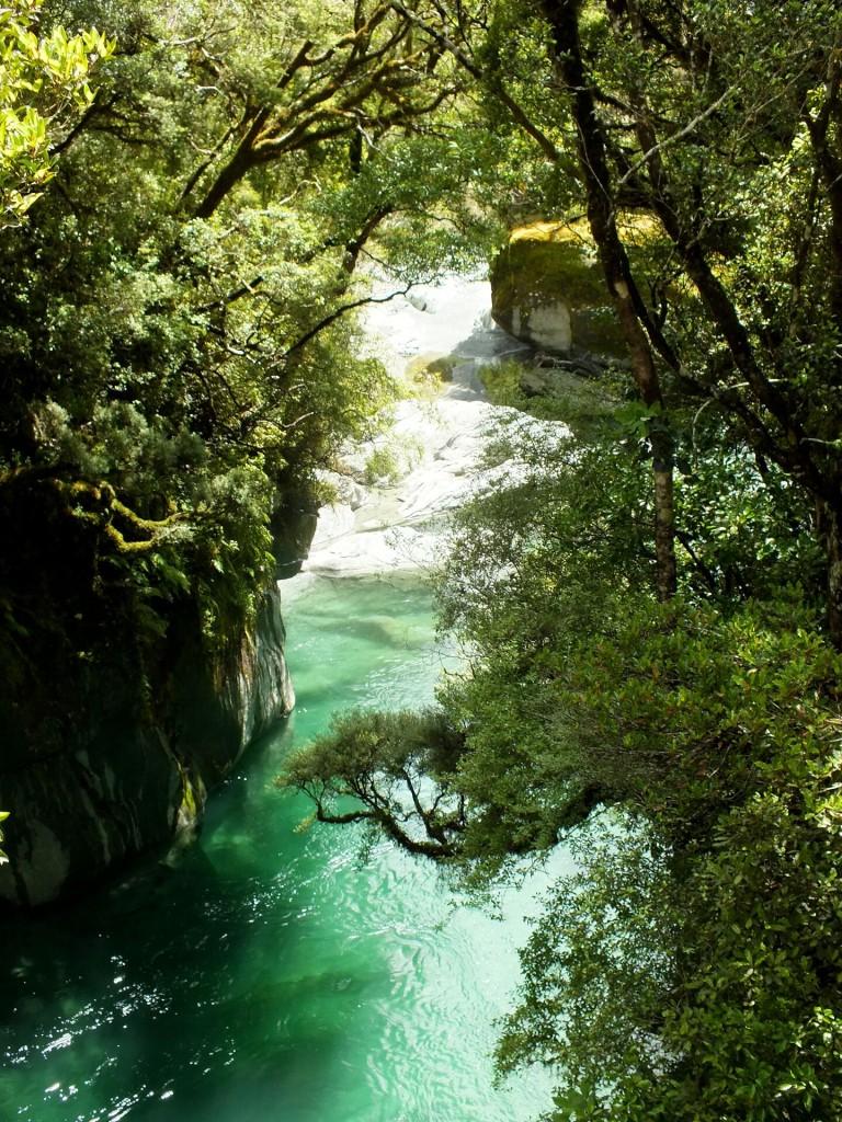 Toaroha River